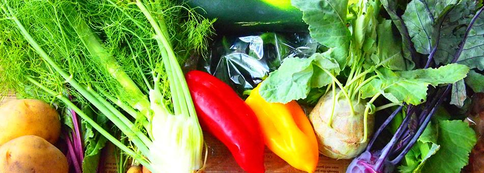 新鮮な野菜と素材